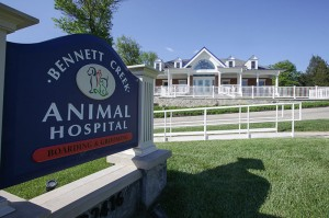 Bennett-Creek-Animal-Hospital-MD-9